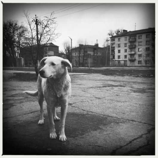 kiev IMG_6291